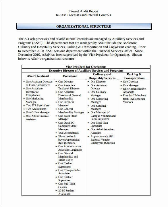 Internal Audit Plan Template Fresh 38 Brilliant Template Samples for Audits Thogati