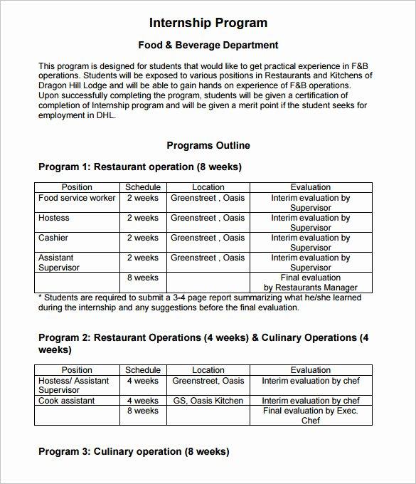 Internship Work Plan Template Elegant Program Outline Template 7 Free Free Word Pdf format