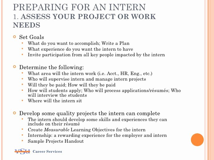 Internship Work Plan Template Lovely Considering An Internship Program