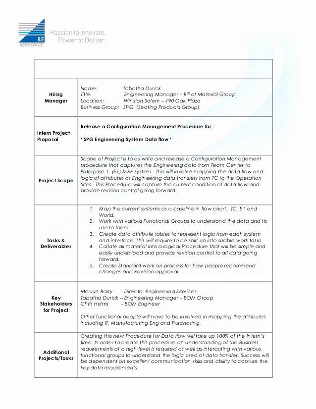 Internship Work Plan Template Unique Intern Project Description Template Bom Group