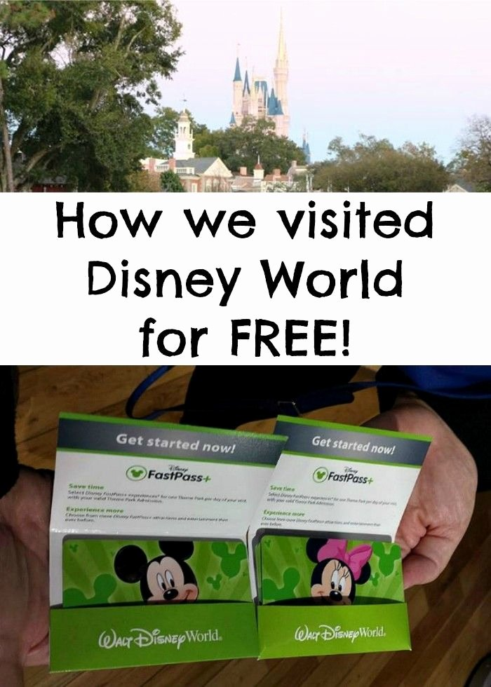 Jist Card Template Best Of 25 Beautiful Disney Worlds Ideas On Pinterest