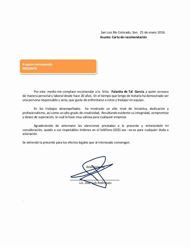 John Nash Letter Of Recommendation Lovely Carta De Re Endacin Personal O Hacerla Con Ejemplos