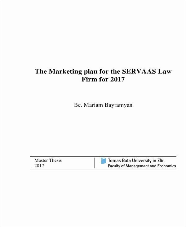 Law Firm Business Plan Template Best Of 10 Law Firm Marketing Plan Templates Word Pdf
