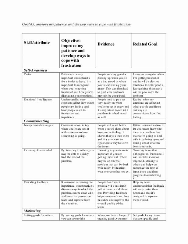 Leadership Development Plan Template Awesome Leadership Development Plan