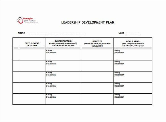 Leadership Development Plan Template Lovely 14 Development Plan Templates Free Sample Example