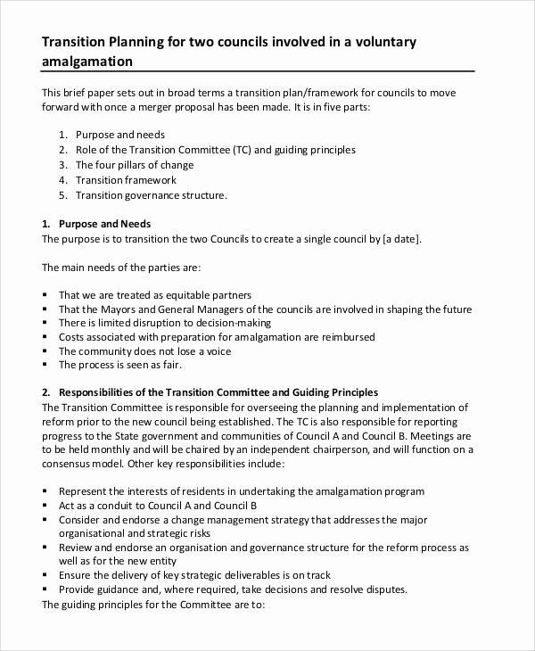 Leadership Transition Plan Template Best Of 8 Program Management Plan Samples