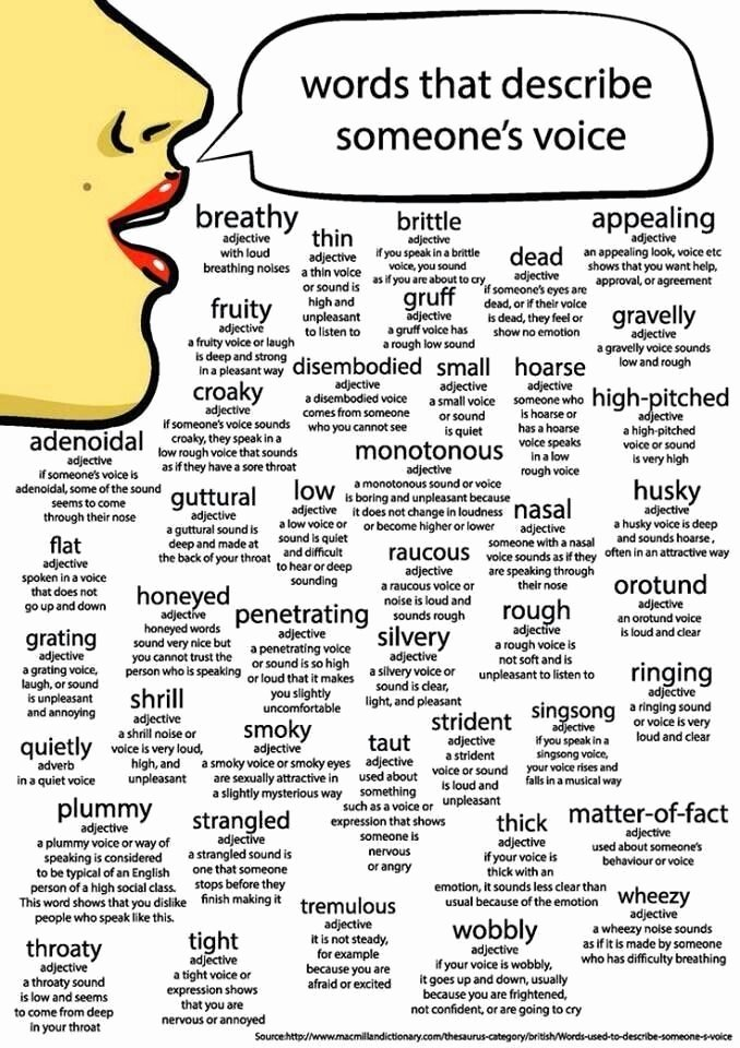 Letter Of Recommendation Adjectives Best Of Words that Start with the Letter O to Describe someone