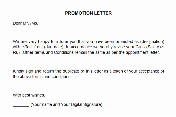 Letter Of Recommendation Definition Best Of 12 Promotion Re Mendation Letter Examples Pdf