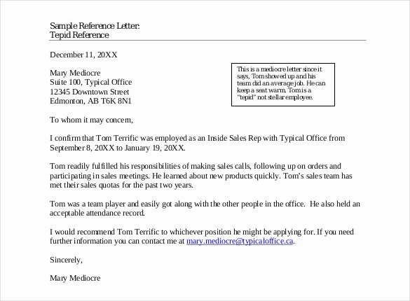 Letter Of Recommendation Email Template Lovely 42 Reference Letter Templates Pdf Doc