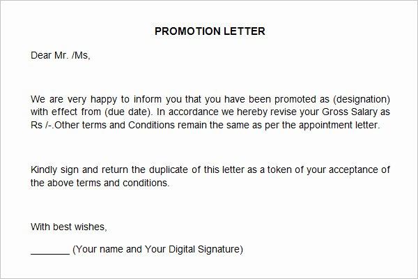 Letter Of Recommendation for Promotion Elegant 12 Promotion Re Mendation Letter Examples Pdf