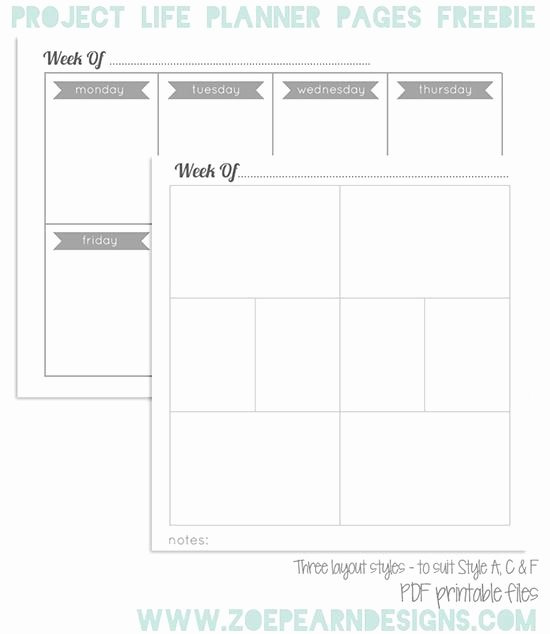 Life Plan Template Free Fresh 1000 Ideas About Project Life Planner On Pinterest
