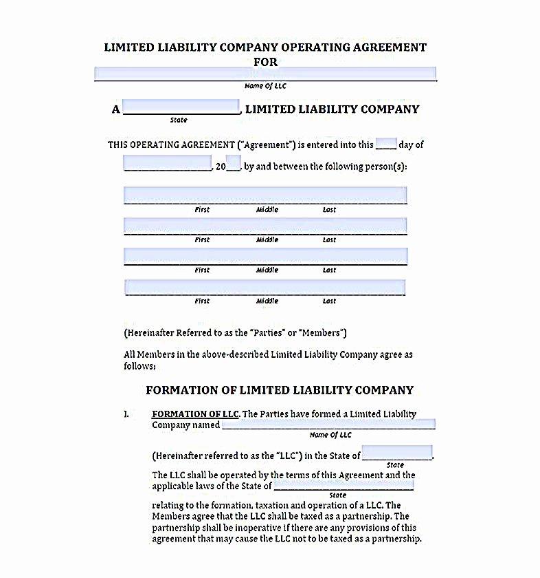 Llc Member Loan Agreement Beautiful 23 Llc Operating Agreement Template