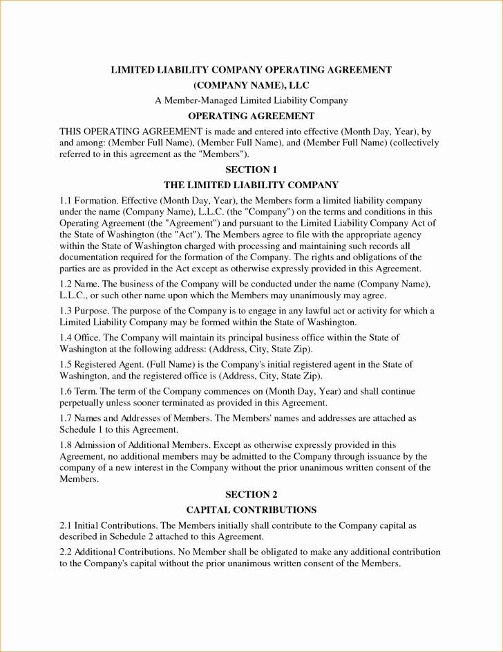 Llc Member Loan Agreement Elegant Agreement Llc Operating Agreement