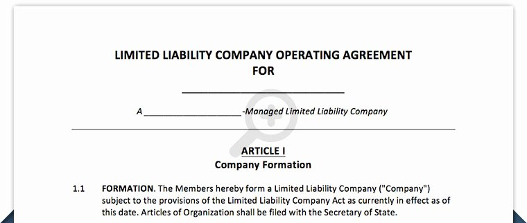 Llc Member Loan Agreement Elegant Limited Liability Pany Operating Agreement Sample