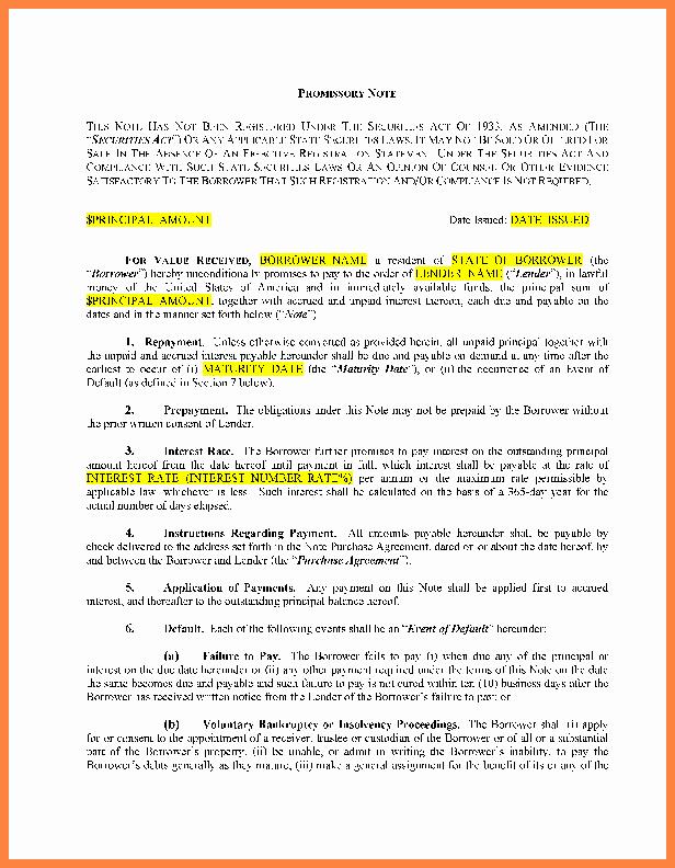Llc Member Loan Agreement New 8 Loan Agreement Template Between Family Members
