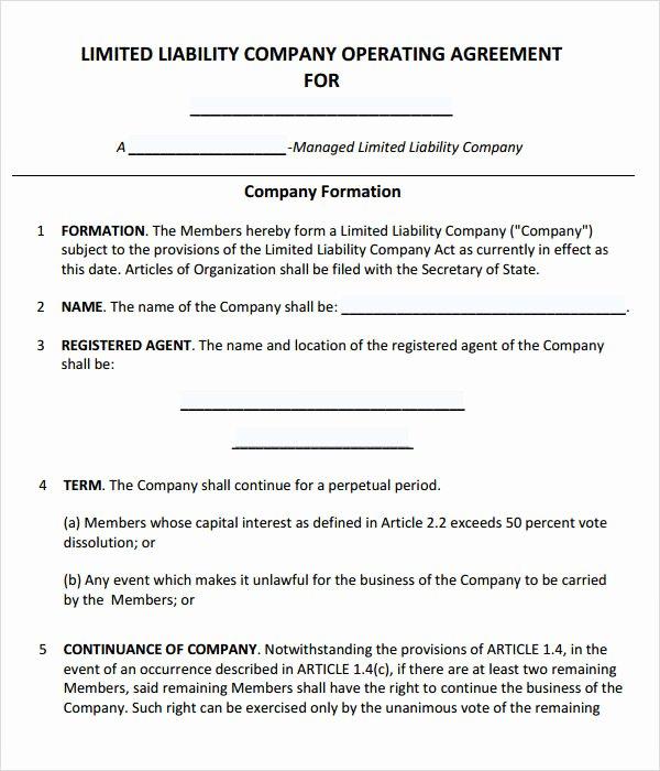 Llc Member Loan Agreement New Operating Agreement 11 Free Pdf Google Doc Apple