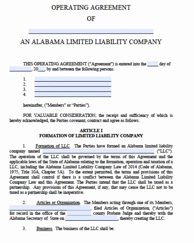 Llc Ownership Transfer Agreement Template Luxury Partnership Agreement Llc