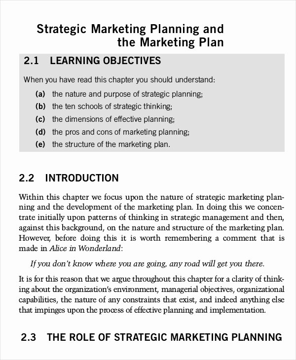 Marketing Plan Template Word Lovely Marketing Plan Template 30 Free Word Excel Pdf Ppt