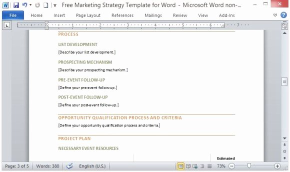 Marketing Plan Template Word Luxury Free Marketing Strategy Template for Word