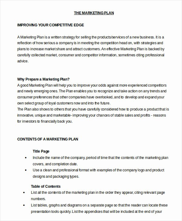 Marketing Plan Template Word Luxury Marketing Plan Template 30 Free Word Excel Pdf Ppt