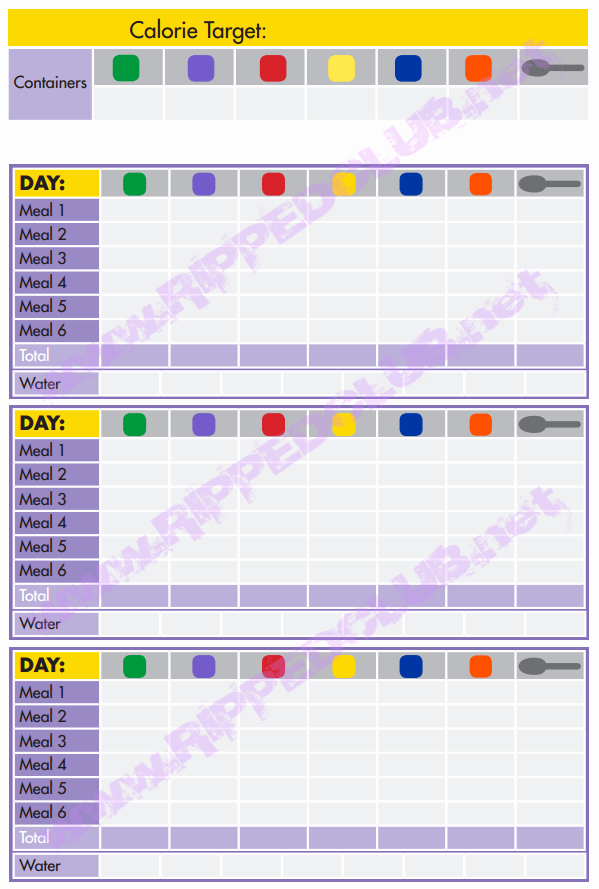 Meal Plan Chart Template Beautiful 21 Day Fix Nutrition Plan Portion Control Hell