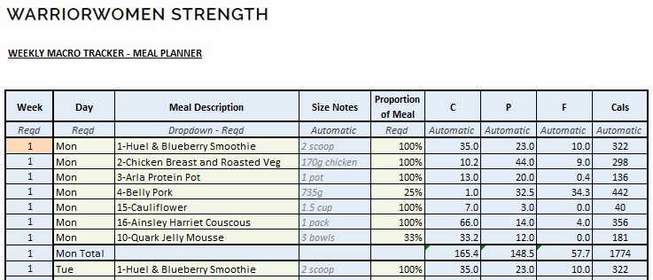 Meal Plan Excel Template Fresh Macro Meal Planner Spreadsheet Warriorwomen Strength