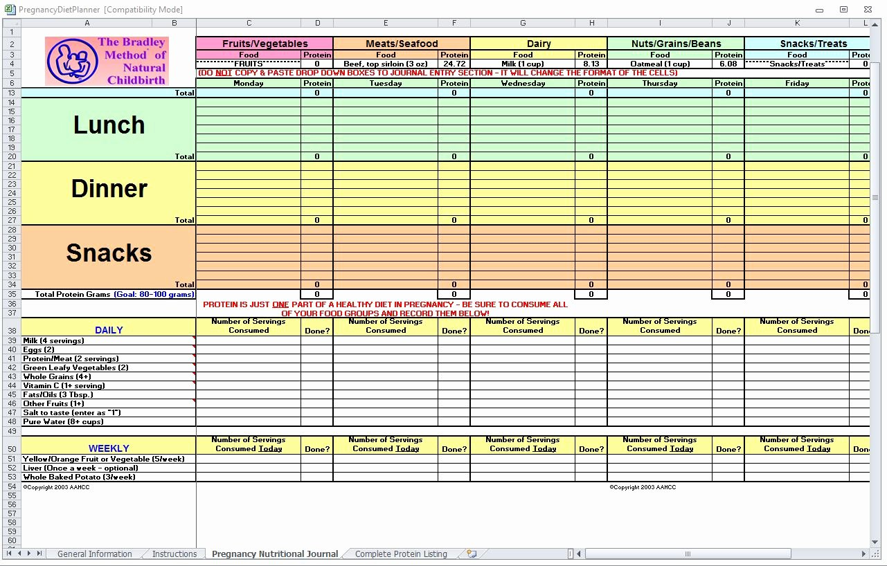Meal Plan Spreadsheet Template Elegant Pregnancy Diet Spreadsheet