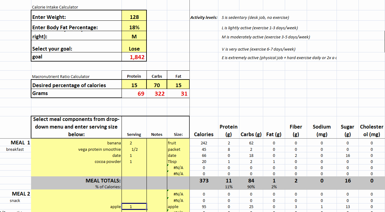 Meal Plan Spreadsheet Template Lovely Diet and Exercise Plan Spreadsheet Diet Plan