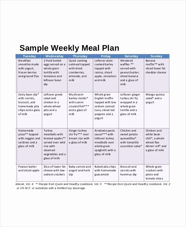 Meal Plan Template Pdf New Weekly Meal Planner 10 Free Pdf Psd Documents Download