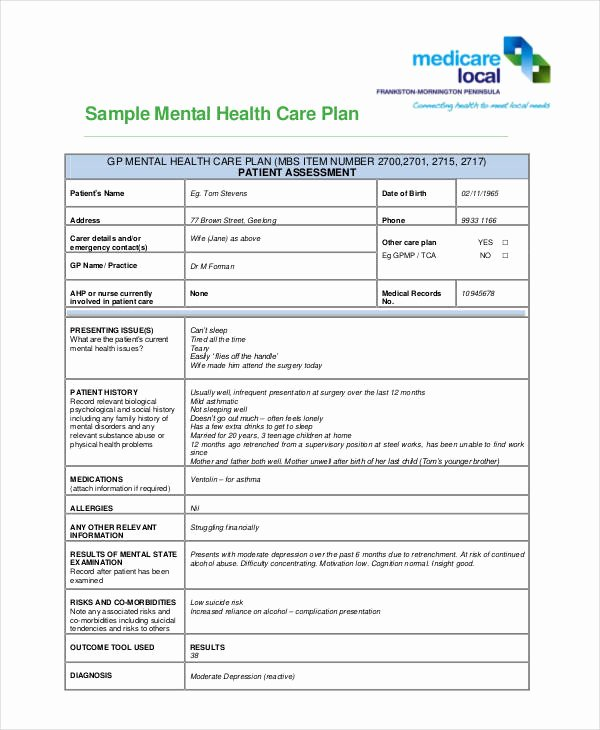 Mental Health Treatment Plan Template Awesome 10 Healthcare Plan Templates Pdf Word