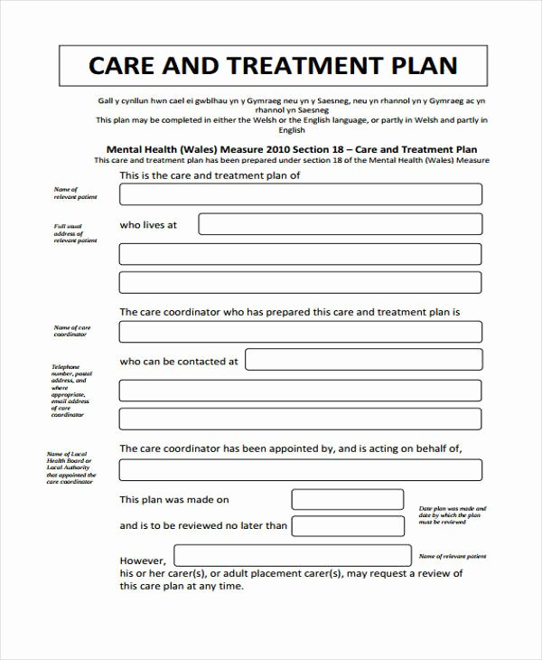 Mental Health Treatment Plan Template Beautiful 29 Free Treatment Plan Templates