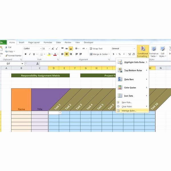 Microsoft Excel Raci Template Elegant Sample Raci Project Management Template