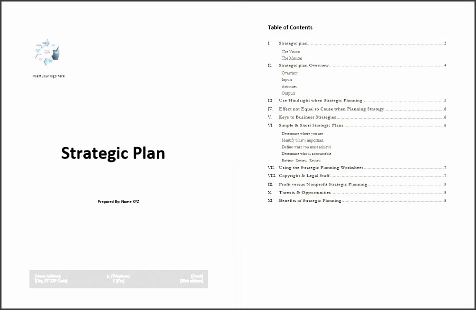 Microsoft Word Strategic Plan Template Luxury 5 Business Strategic Plan Template Sampletemplatess