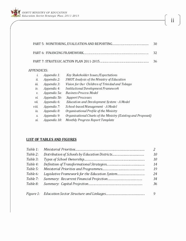 Ministry Strategic Plan Template Best Of Church Ministry Action Plan Template Emergency Fice