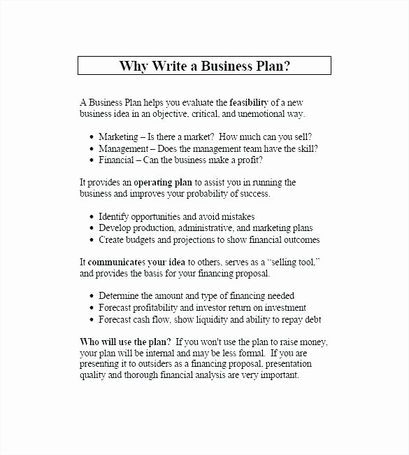 Music Business Plan Template Best Of Internal Marketing Plan Template Music Business Plan