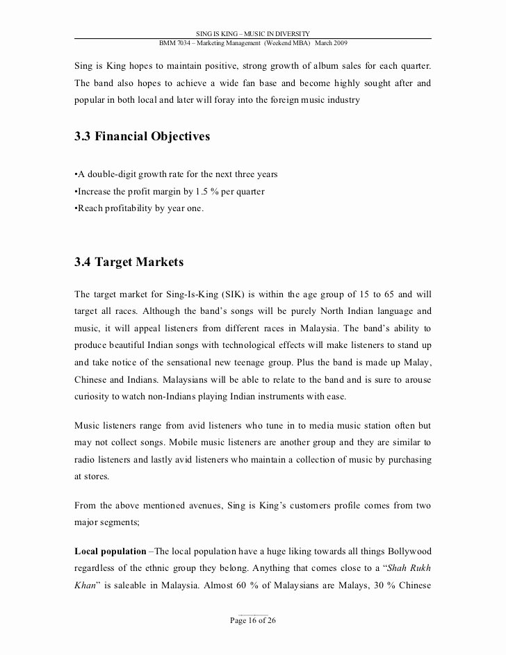 Music Business Plan Template Elegant Sample Marketing Plan Music Industry