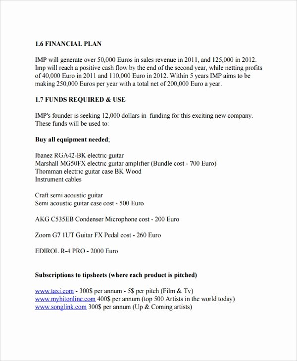 Music Business Plan Template New 29 Sample Business Plan Templates