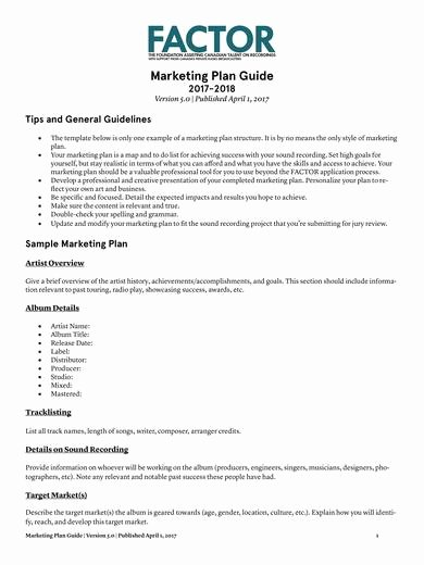 Music Marketing Plan Template Best Of 10 Music Marketing Plan Templates Pdf Word