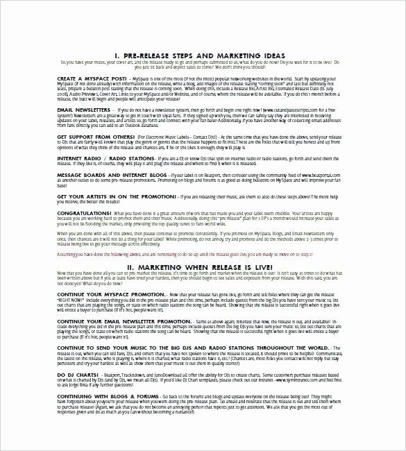 Music Marketing Plan Template Luxury Advertising Plan Template 7 Free Word Excel Document