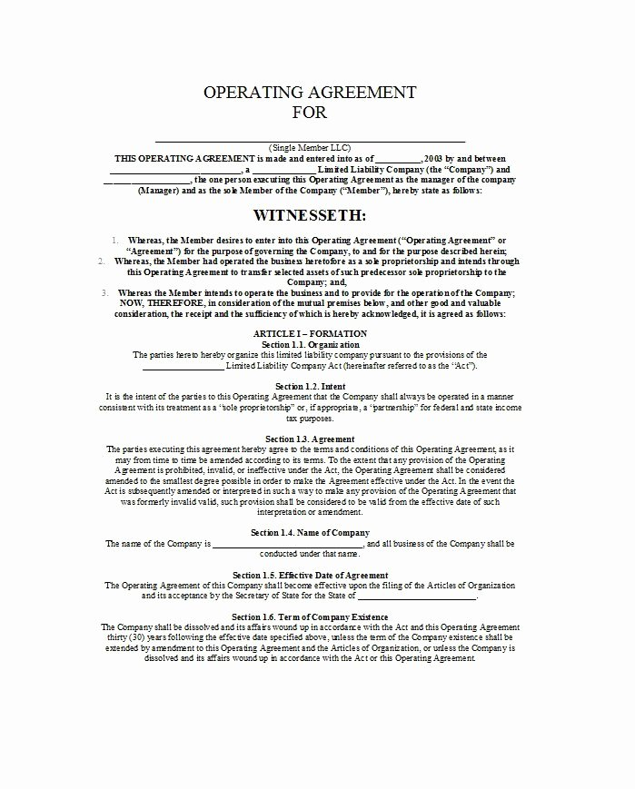 Net 30 Agreement Template Best Of 30 Free Professional Llc Operating Agreement Templates