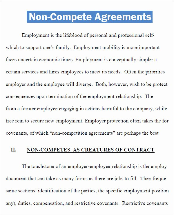 Non Compete Agreement Georgia Template Luxury Non Pete Agreement 7 Free Pdf Doc Download