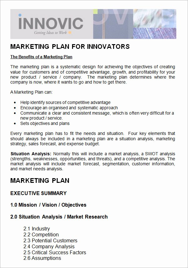 Non Profit Marketing Plan Template Awesome 14 Sample Marketing Plan Templates