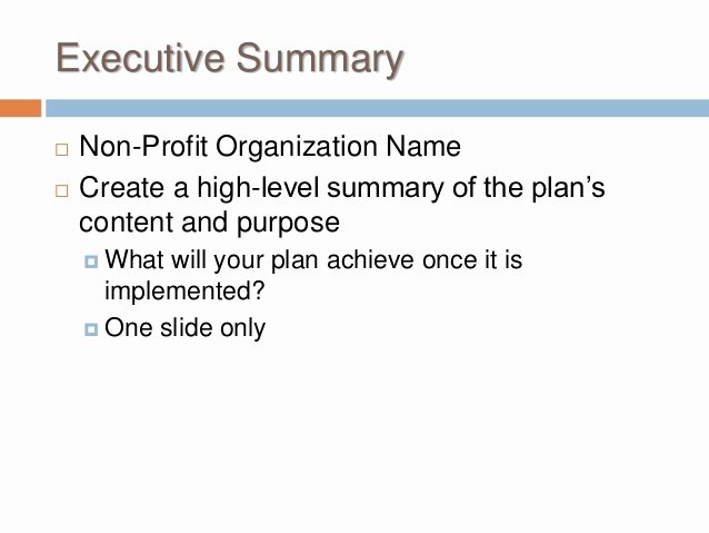 Non Profit Marketing Plan Template Best Of Buss 424 Marketing Plan Non Profit Marketing Plan Template 2