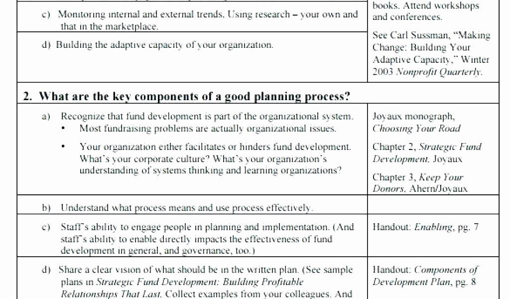Non Profit Strategic Plan Template Elegant Mercial Excellence Sales Plan Example Strategies