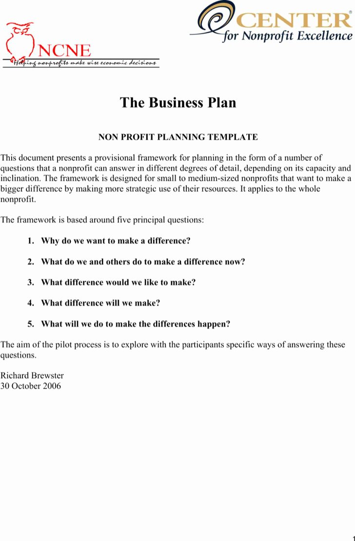 Nonprofit Business Plan Template Pdf Awesome 20 Non Profit Business Plan Template Free Download