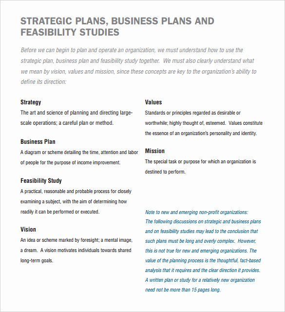 Nonprofit Business Plan Template Pdf Beautiful 22 Non Profit Business Plan Templates Pdf Doc