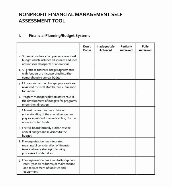 Nonprofit Business Plan Template Pdf Beautiful Sample Non Profit Business Plan
