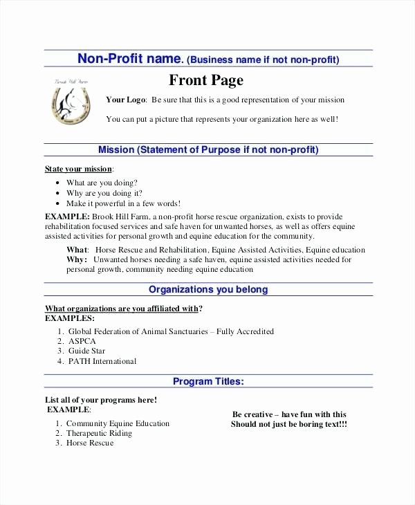 Nonprofit Business Plan Template Pdf Luxury E Page Nonprofit Business Plan Template Sample Uk Ngo Pdf
