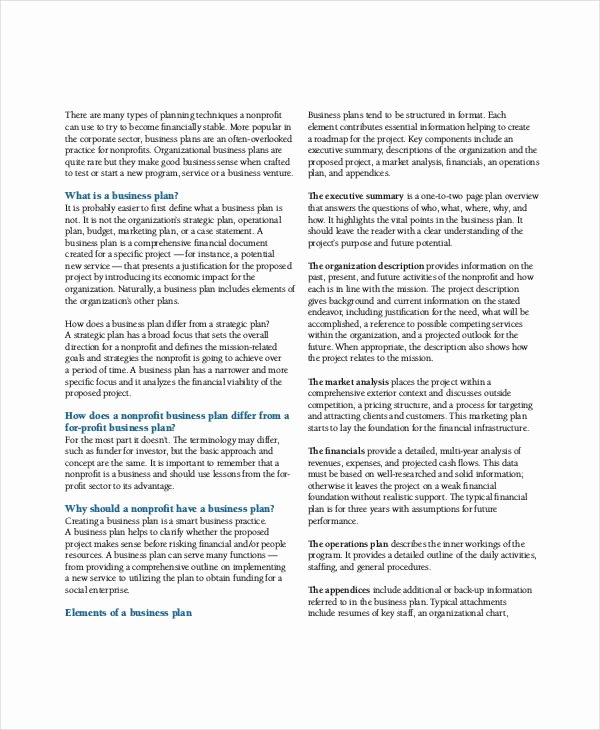 Nonprofit Business Plan Template Pdf Luxury Non Profit Business Plan 13 Pdf Word Documents