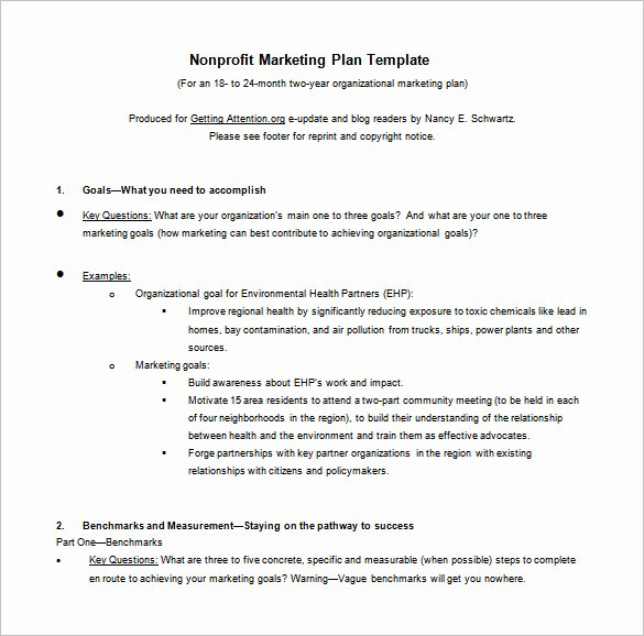 Nonprofit Marketing Plan Template Beautiful 8 Marketing Action Plan Templates Doc Pdf